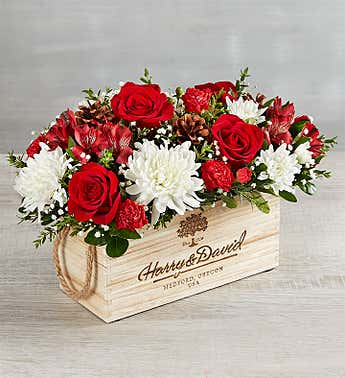 Christmas Flowers Christmas Floral Arrangements Delivery 1800flowers